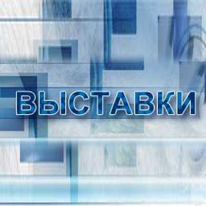 Выставки Бутурлиновки